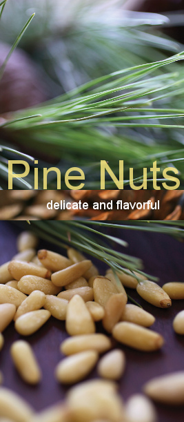 Pine Nuts Banner